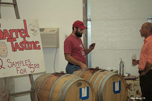 Patrick Williamson, Orchardist, supplying a barrel tasting of Syrah and Petit Sirah. They're going to be super!